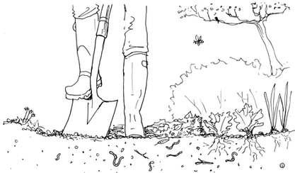 Digging in the Vegetable Garden
