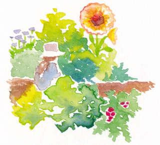 Watercolor Vegetable Garden Illustration