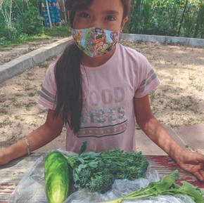 Gardening as Science Education
