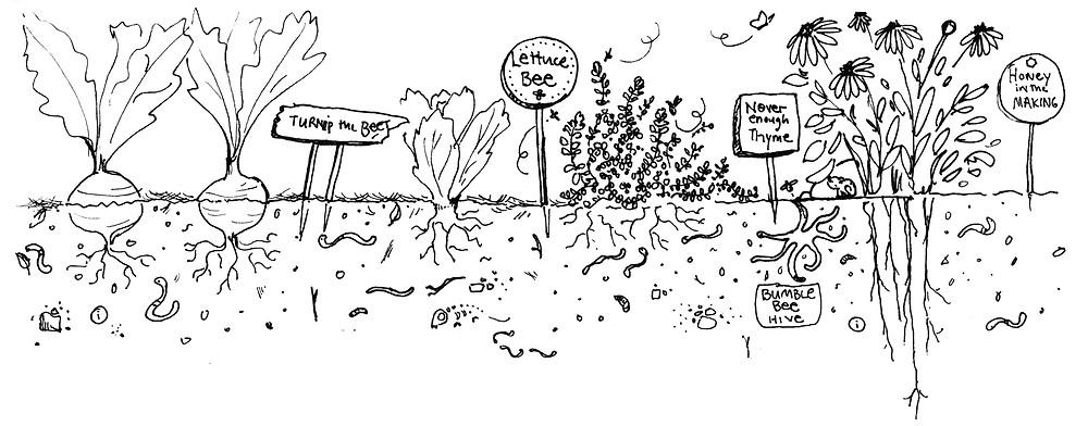 Garden Signs - Garden Illustration by Idelle Fisher