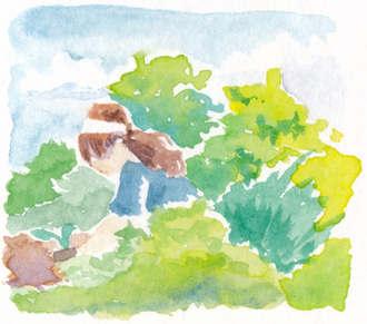 Watercolor Vegetable Garden