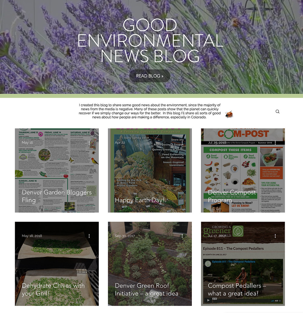 Wix Wordpress Blog Import - testing with my Good Environmental News Blog