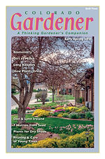 Editor's Letter: Spring 2021