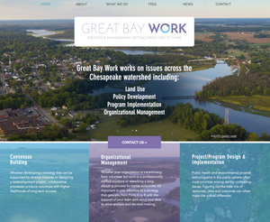 Wix Templates - for Environmental Consultant