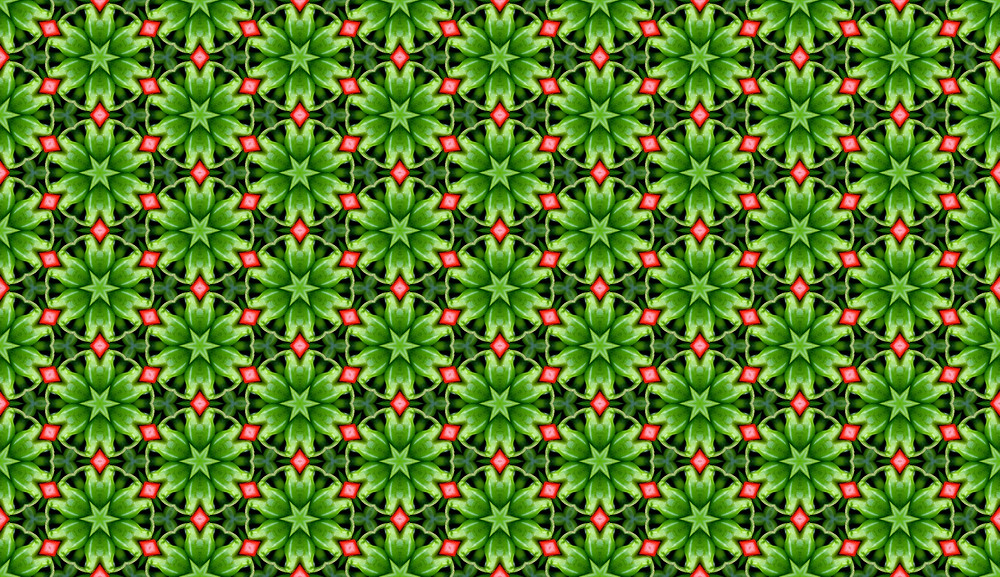 Web Designer Tip: Pattern Maker – Green Seamless Pattern from Chile Photo