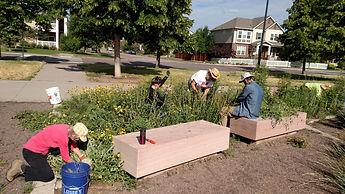 Volunteering-Aurora-Kelly-Reservoir-8th-Uinta-Flower-Beds-2.jpg