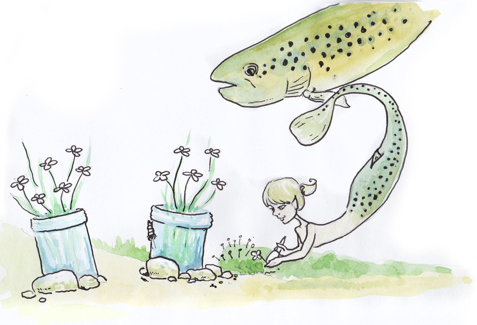 Trout Mermaids Illustration