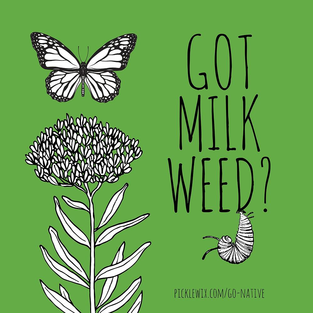 Garden Website Templates: We also offer Graphic Design!