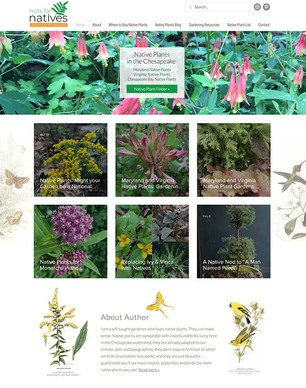 Best-Wix-Websites-Native-Plants-Blog-.jp