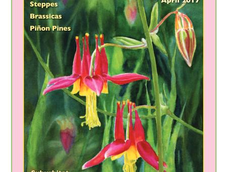 Editor's Letter: April 2017
