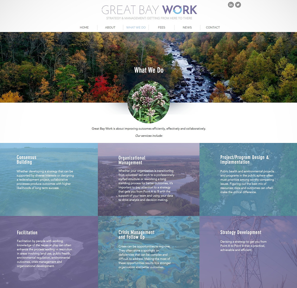 Best Wix Websites 2020 for Environmental Consultant
