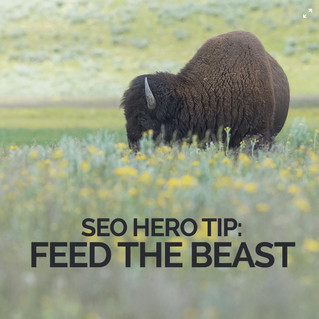 SEO Hero Tip: FEED THE BEAST