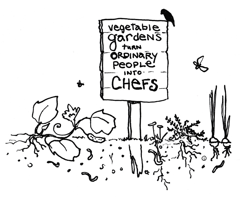 Vegetable Gardens turn Ordinary People into Chefs Sign - Garden Illustration by Idelle Fisher