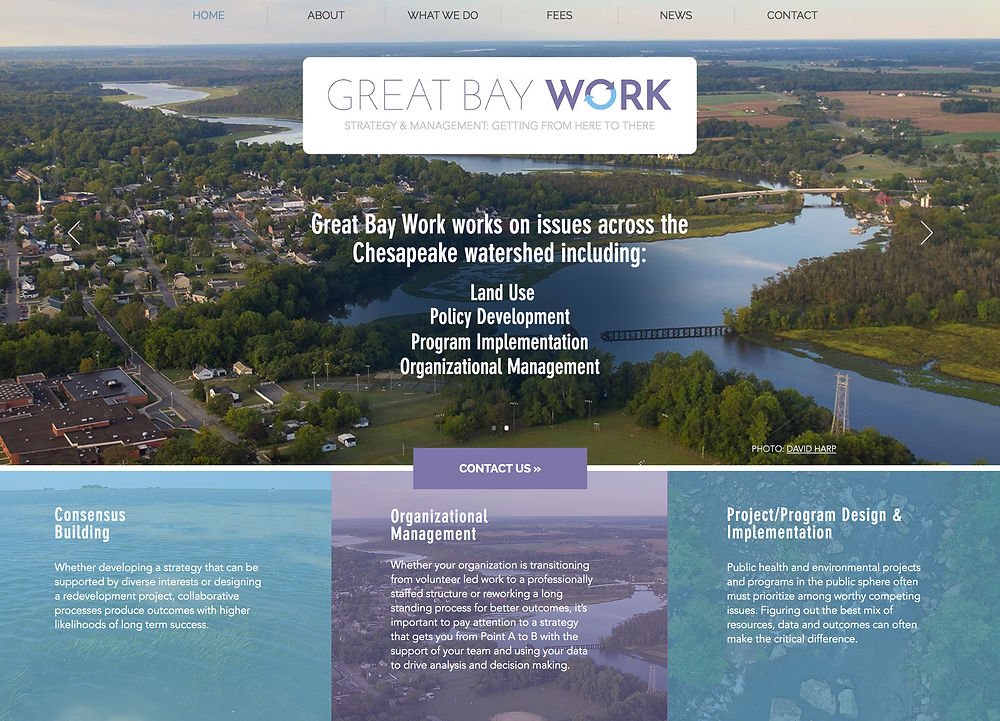 Wix Website Examples: Environmental Consultant Website