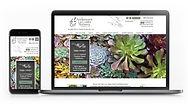 Website Designer in Denver
