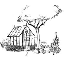 Greenhouse Illustration by Idelle Fisher