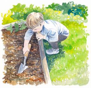 Little Vegetable Gardener Illustration