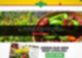 Sandia-Seed-Website-Designer.jpg