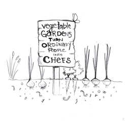 Vegetable Gardens Turn Ordinary People into Chefs - Illustration by Idelle Fisher