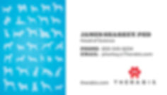 Therabis-Business-Cards-2019.jpg