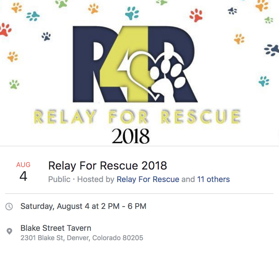 Relay For Rescue 2018
