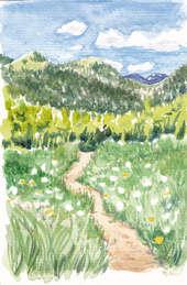 Denver Illustrator – Path