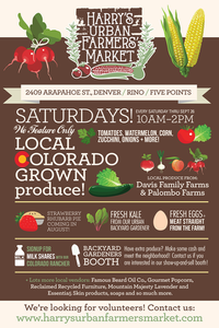 Infographic Graphic Designer - for Farmer's Market