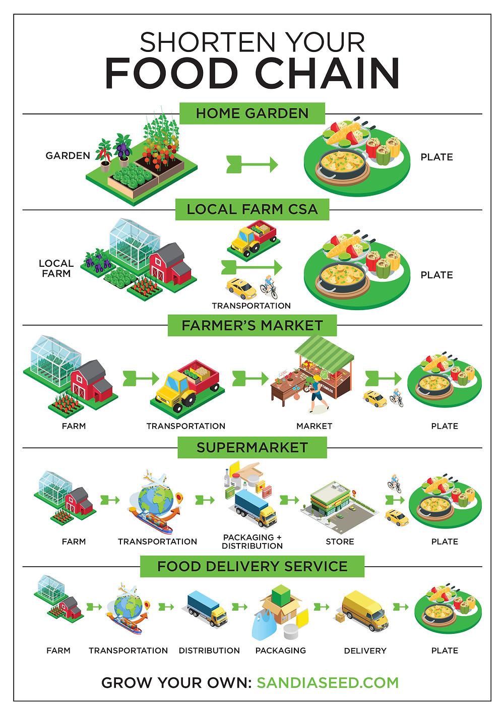 Denver SEO Expert - Infographic Designer for Food Chain Infographic