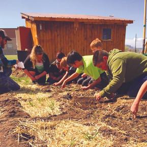 Growing Colorado Gardeners
