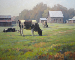 Cows in Pasture, Tremblant 24x30
