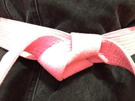 Pink Belt Campaign Huge Success!