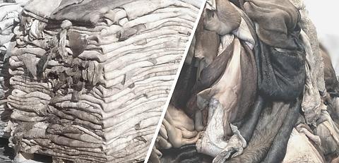 pelli grezze, raw hides, tracciabilità
