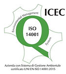 ISO 14001, Sistema di gestione ambientale