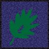 JF_Brazil-P-S_thumb3.png