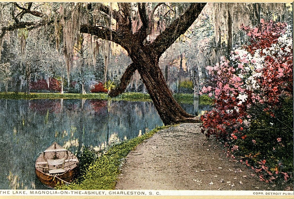 Photo H - The Lake - Magnolia on the Ash