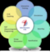 Metodologi Training Sales C-IQ Jimmy Sudirgo