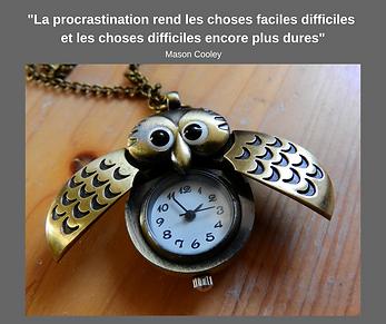 Procrastination citation_Sylvie Franco C