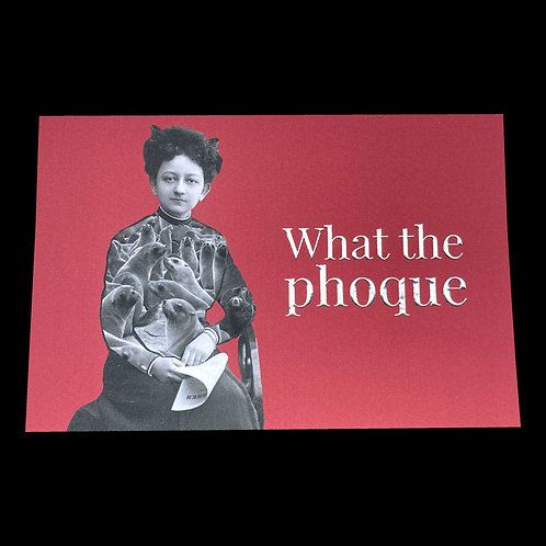 Carte postale / What the phoque