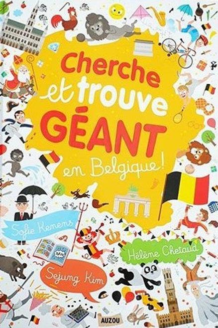Cherche et trouve géant en Belgique