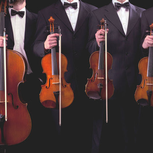 PAST EVENT: A Strings & Organ Soiree (4pm Concert)