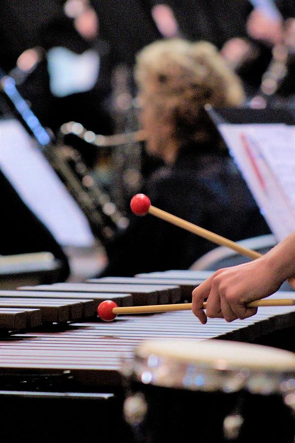 Marimba closeup-min.JPG