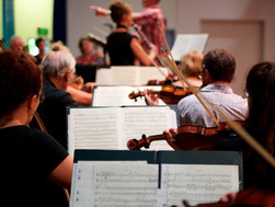 Violins 2.jpg