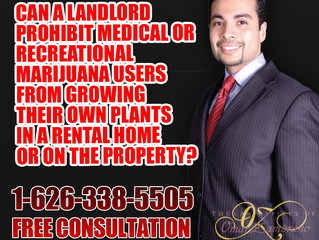 Can a landlord prohibit medical or recreational marijuana users from growing their own plants in a r