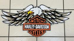 Harley Davidson Cycles