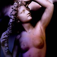 PHOTOGRAPHY FILE: VENUS