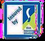 First Insurance logo