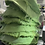 Thumbnail: Green Behavior Bucket