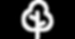 ntk_webiste_aboutMagazines_treeSymbol_00