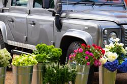 Farmers Market - June 18-6