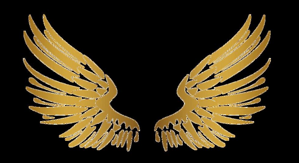 wings.png